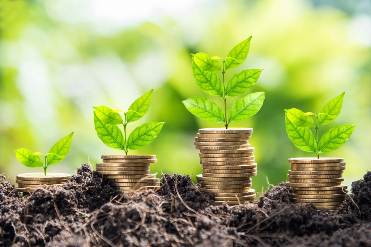 На Кипре зафиксирован значительный рост активов инвестиционных организаций