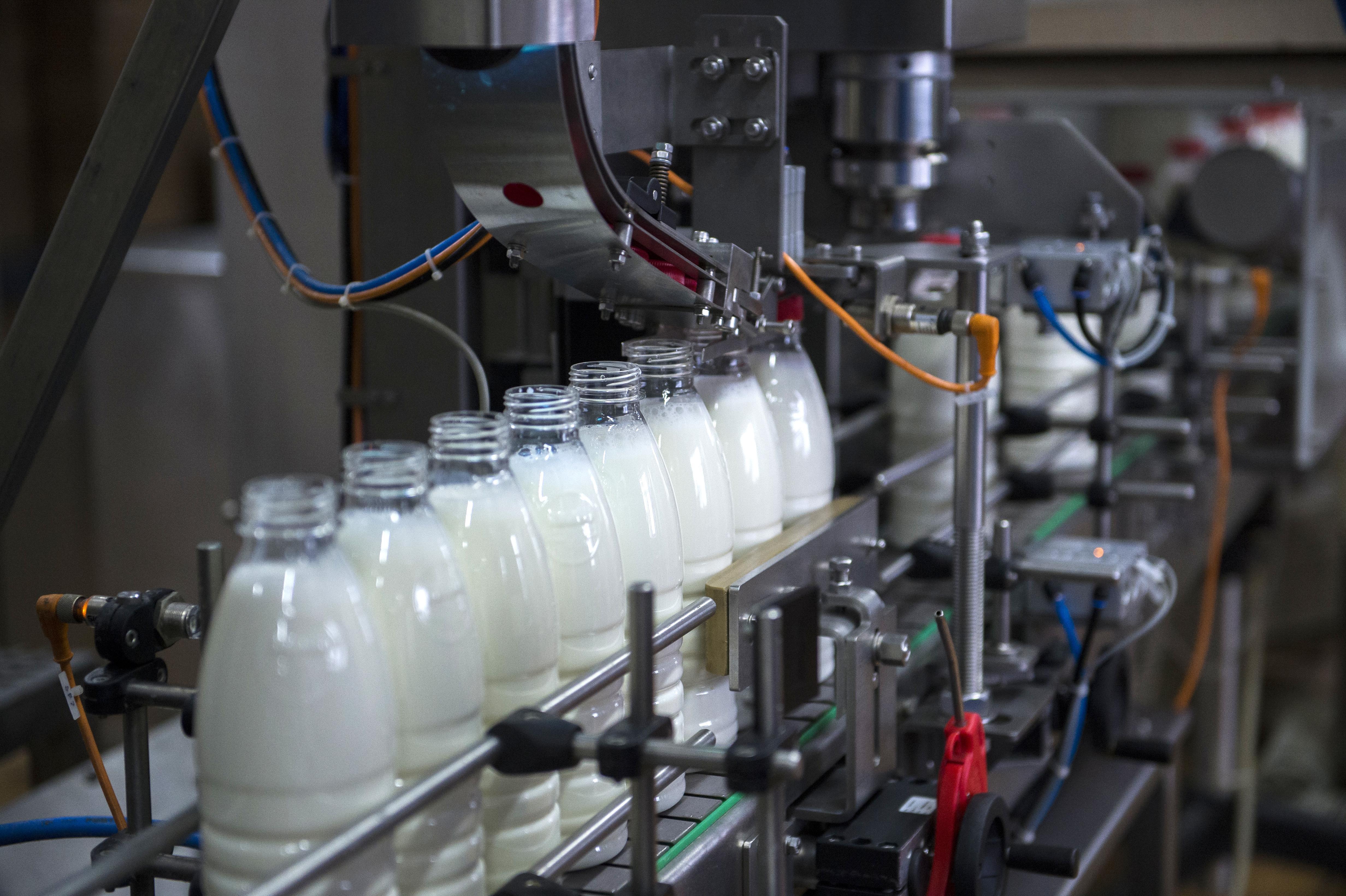На Кипре построят новый молочный завод